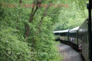 Train take me home.
