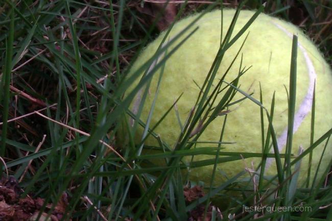 ztennisball